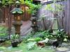 Zákoutí v japonské zahradě