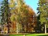 Villa Vítkov
