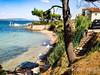 Apartmány Tartana - písečná pláž Tkon 330 m od domu, Tkon, ostrov Pašman, Chorvatsko