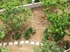 Pohled z velké terasy na zahradu