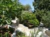 Mediteránská zahrada kolem domu