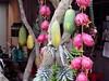 Mekong, ovoce
