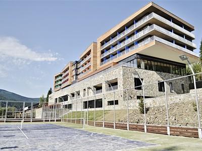 Dolní Morava - Wellness hotel Vista
